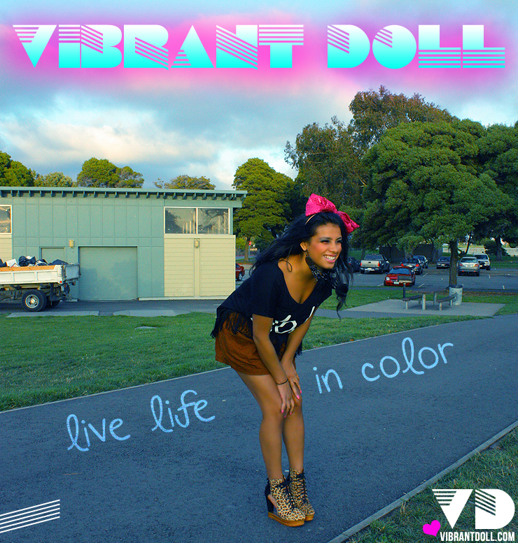 VDbanner2 Vibrant Doll Store